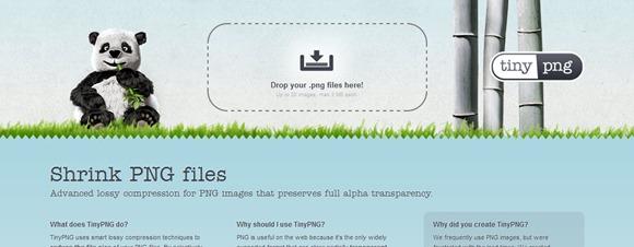 tinyPNG_WEB